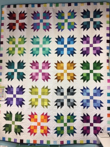 Bear Paw Patches Quilt Kit